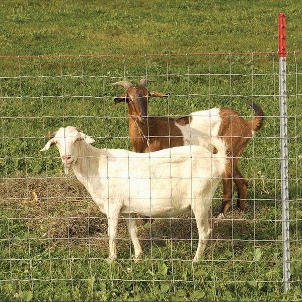 供应养殖围栏护栏网价格优惠质量好