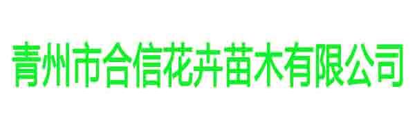 青州市合信花卉苗木有限公司