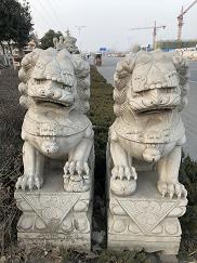 迪庆石狮子-供应云南精致石狮子
