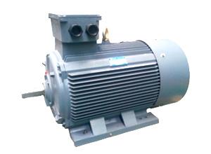 西安西玛高压电机-高陵高压电机哪个牌子好