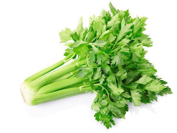 郑州同城新鲜蔬菜配送