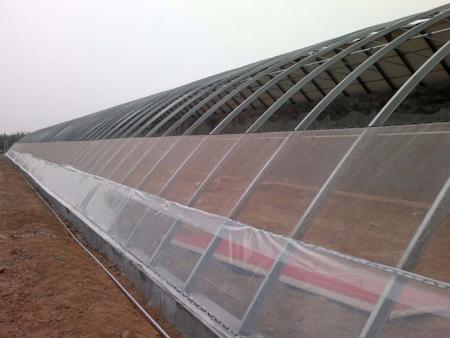 花卉温室大棚承建