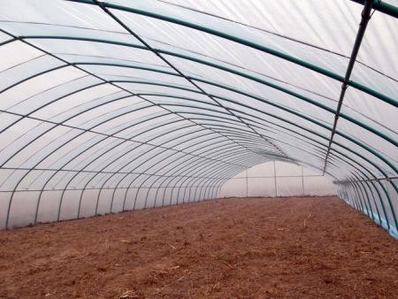 花卉温室专业设计建造_江苏花卉温室大棚