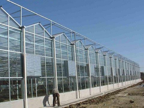 新型智能温室大棚设计哪家好 智能温室大棚造价智能温室大棚承建