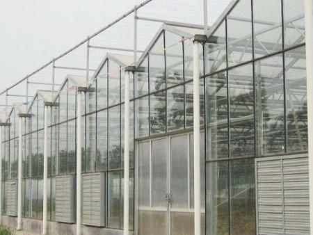 【互助一下】纹络式玻璃温室大棚设计,哪家好
