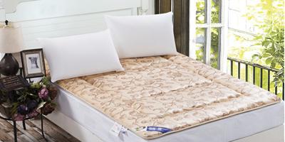 新乡哪里有供应价格优惠的床垫――鹤壁磨毛床垫