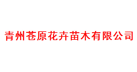 青州苍原花卉苗木有限公司