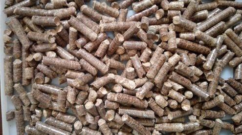 南通耐用的生物质颗粒燃料批售,温州实木颗粒厂家推荐