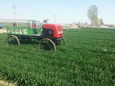 运秧机生产厂家 隆顺农业机械提供有品质的运秧机械