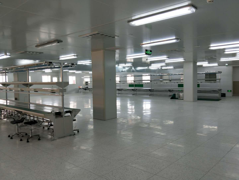知名的皮带输送线供应商_宏宇翔机械设备|厦门皮带输送线