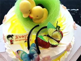 蛋糕培训学校|山东值得信赖的裱花蛋糕培训