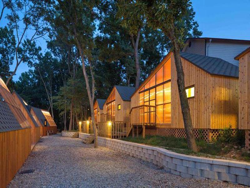 轻型木结构房屋