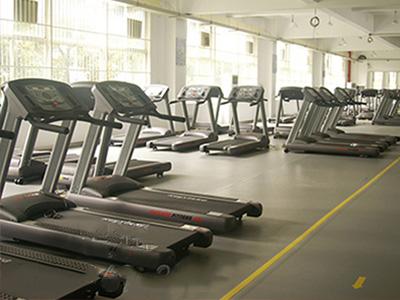 塑胶环保地板-供应北京市专业的健身房专用地板