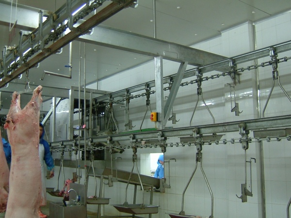 大型吊宰設備-專業的屠宰設備推薦