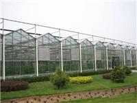 阳光板智能温室与连栋薄膜温室大棚的区别