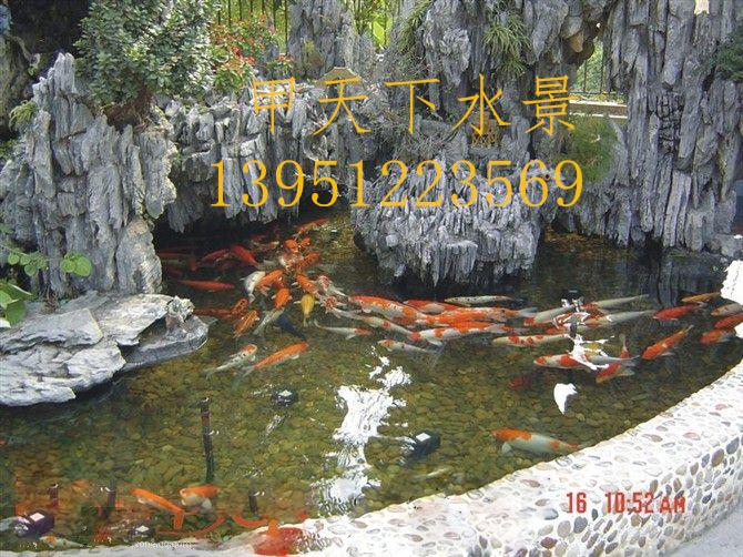 苏州市假山鱼池水处理。72小时清澈见底!