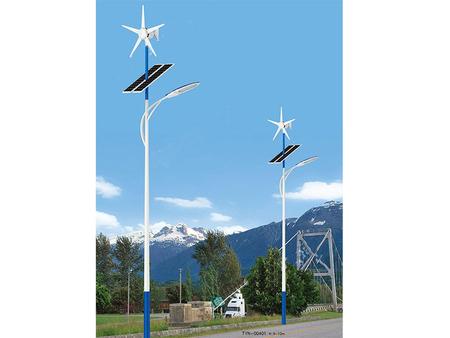 太阳能风光互补道路灯系列