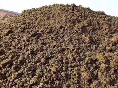 生物发酵肉粉