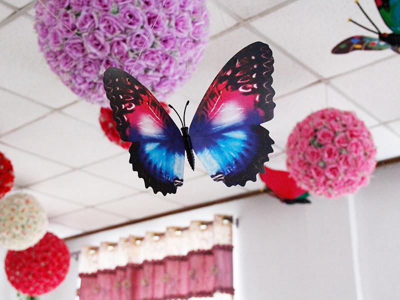 温州优惠的22公分蝴蝶上哪买 超值的仿真蝴蝶