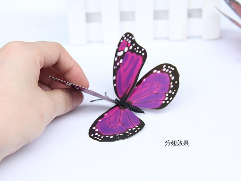 价格合理的立体仿真蝴蝶 买质量超群的君主蝶12厘米,就到温州金蝴蝶工艺品