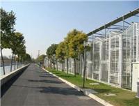 太阳能光伏板温室建设工程、智能玻璃温室建设成本预算、连栋温室