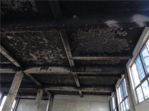 安徽京翼建筑工程检测提供可靠的房屋灾后检测-庐阳灾后检测
