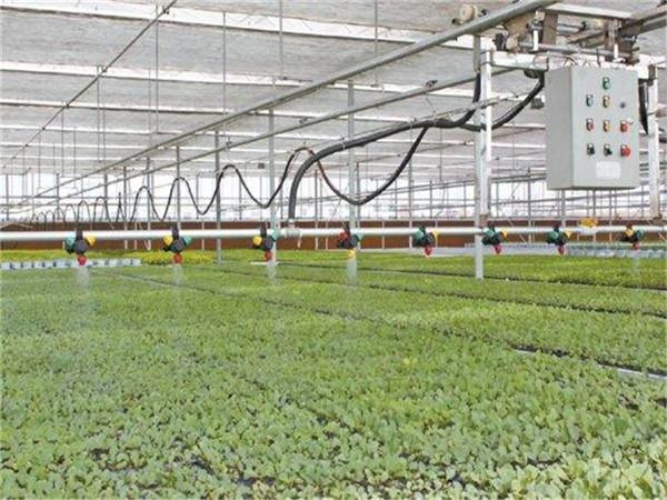 承建各地连栋温室大棚(农业连栋温室、简易温室大棚、采摘大棚)