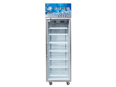 专业的便利店冷柜公司推荐|食品保鲜好的冷柜