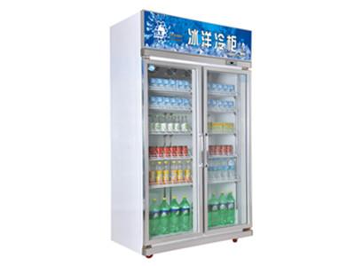 專業的便利店冷柜公司推薦|食品保鮮好的冷柜
