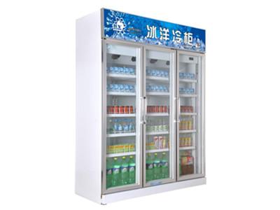 新款便利店冷柜推荐,便利店的冰柜