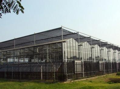 玻璃温室报价|山东玻璃温室工程造价