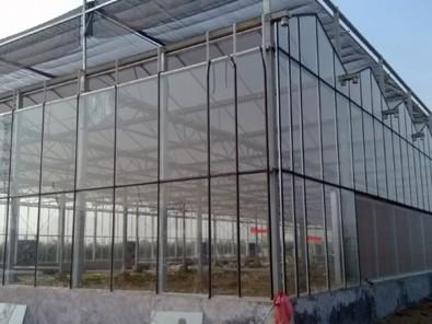 连栋温室_潍坊连栋温室专业建设