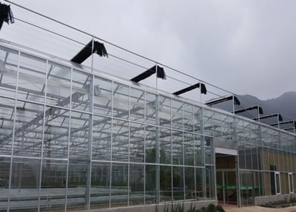 纹洛温室就选凯尔农业科技_纹洛温室