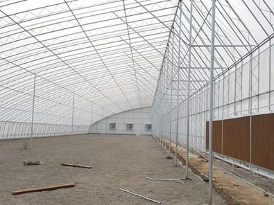 想建冬暖式日光棚就到凯尔农业科技-冬暖式日光棚工程