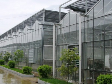 玻璃温室承接_哪里有提供称心的智能温室