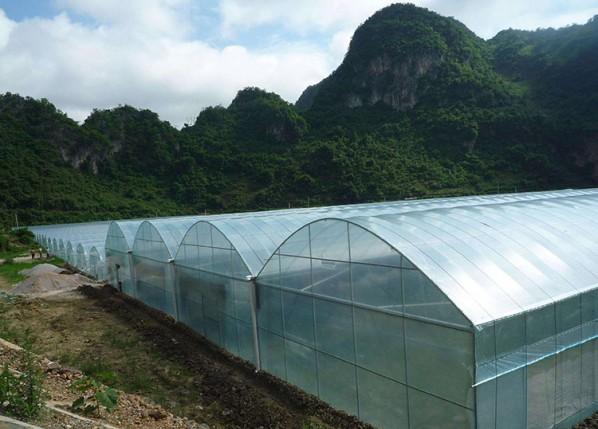 薄膜温室_薄膜温室建造找凯尔农业科技