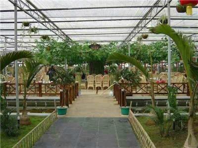 生態餐廳建造_高質量的生態餐廳推薦