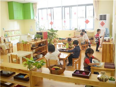 厦门好的私立幼儿园-启慧教育-可靠的蒙特梭利教育机构
