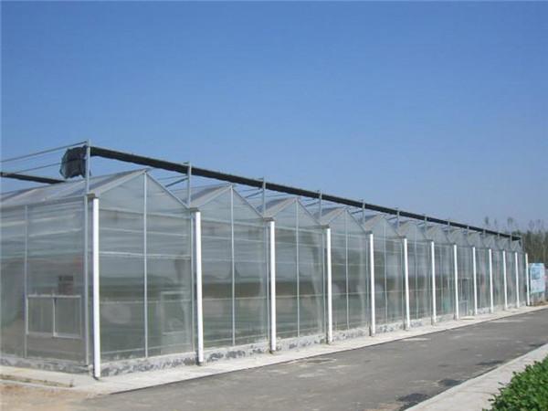 (大棚→利广)【新型阳光板温室价格】【阳光板温室设计】