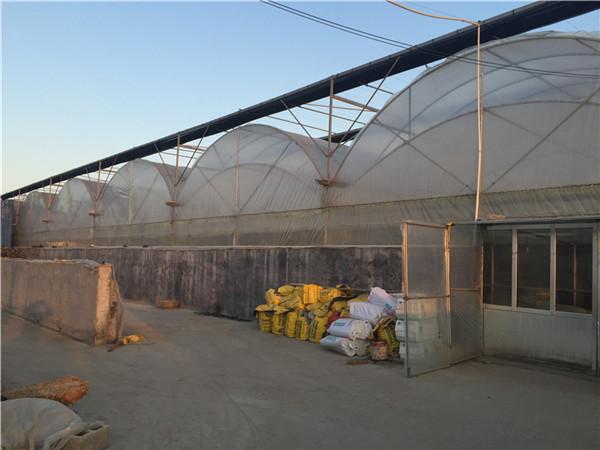 薄膜连栋温室的特点-薄膜连栋温室建造厂家-薄膜连栋温室价格