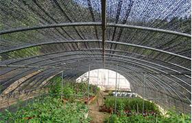 遮阳网厂家-实惠的遮阳网哪里有