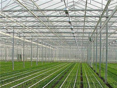 蔬菜溫室價格_山東報價合理的蔬菜溫室