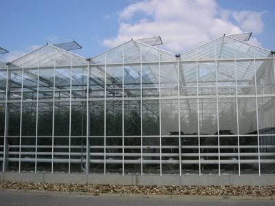 纹络式温室大棚建造