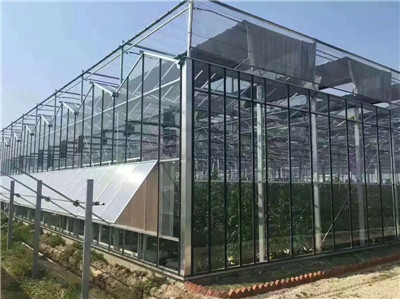 河北阳光板温室报价找春诚温室园艺-阳光板温室建造