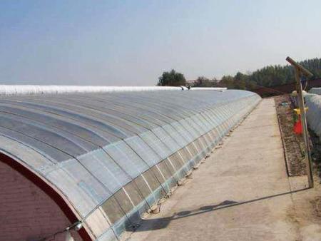 葡萄温室大棚建造商