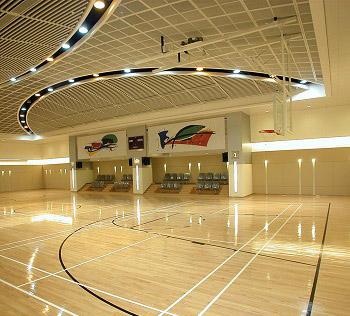 20mm室內體育場地板-東莞哪有供應高性價體育木地板