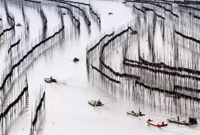 霞浦摄影团选哪家-高品质的霞浦摄影就在雷兴滩涂摄影