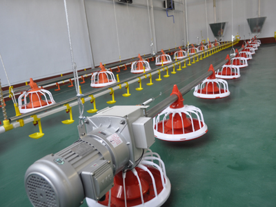 华邦厂家生产养鸡料线喂料机料线饲料提升机投料机
