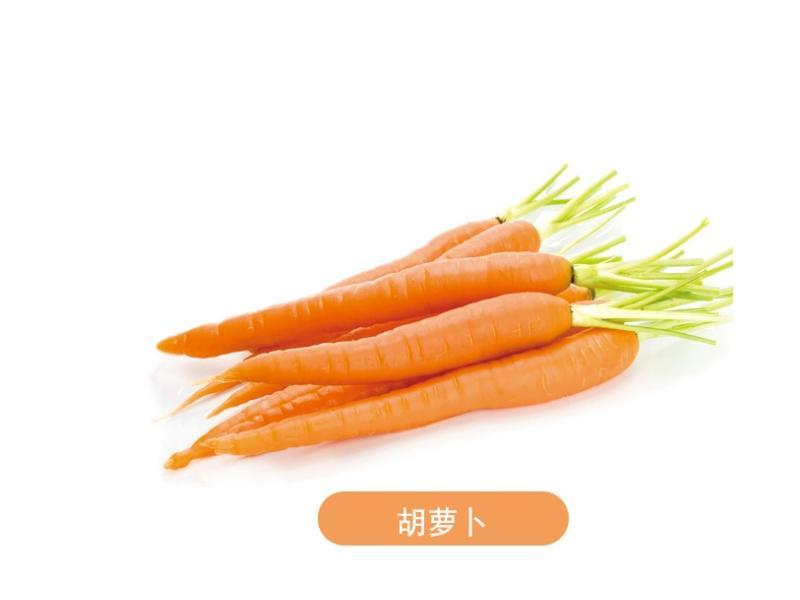 胡萝卜厂家供应_济宁价格胡萝卜哪里买