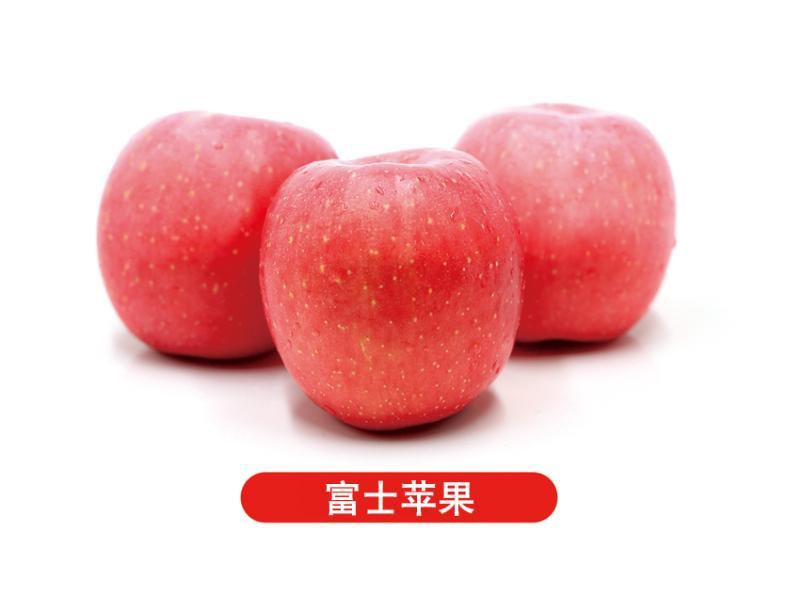 山东苹果市场_实力可靠的苹果经销商